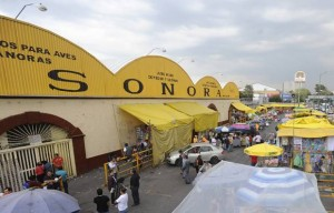 mercado_sonora_1_0