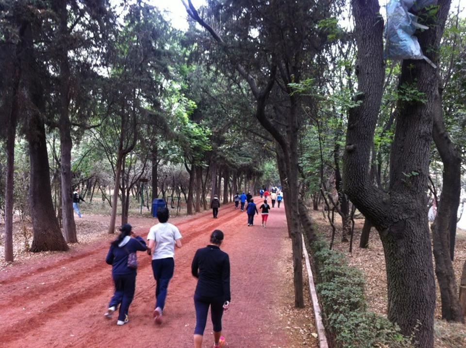 5 parques para hacer ejercicio m sporm s for Viveros en rosario