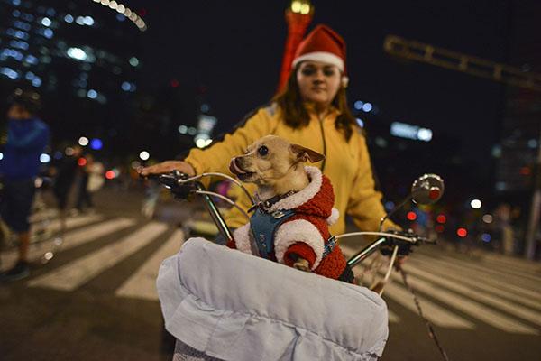 Paseo_ciclista_Nocturo-2