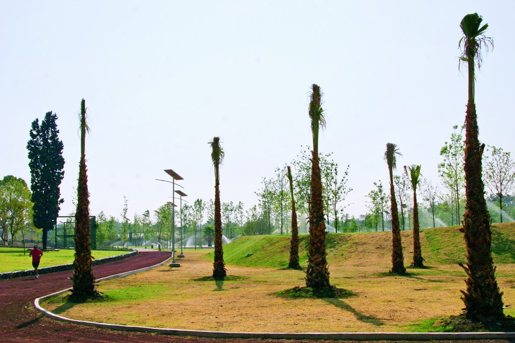 MEXICO, D.F., 06ABRIL2011.- Una persona corre en la pista de una de las cinco áreas temáticas que fueron concebidas dentro de las 55 hectáreas saneadas -en lo que fuera la ex Refinería 18 de Marzo-, del Parque Bicentenario, sólo cuatro fueron abiertas al público. Con sus más de 3 mil árboles, 4 kilómetros de andadores y 3 de ciclopista, cinco jardines temáticos y canchas deportivas, el Parque Bicentenario representa uno de los pulmones más importantes de la Ciudad de México, sólo superado por el Bosque de Chapultepec, apuntó el Presidente. FOTO: MISAEL VALTIERRA/CUARTOSCURO.COM