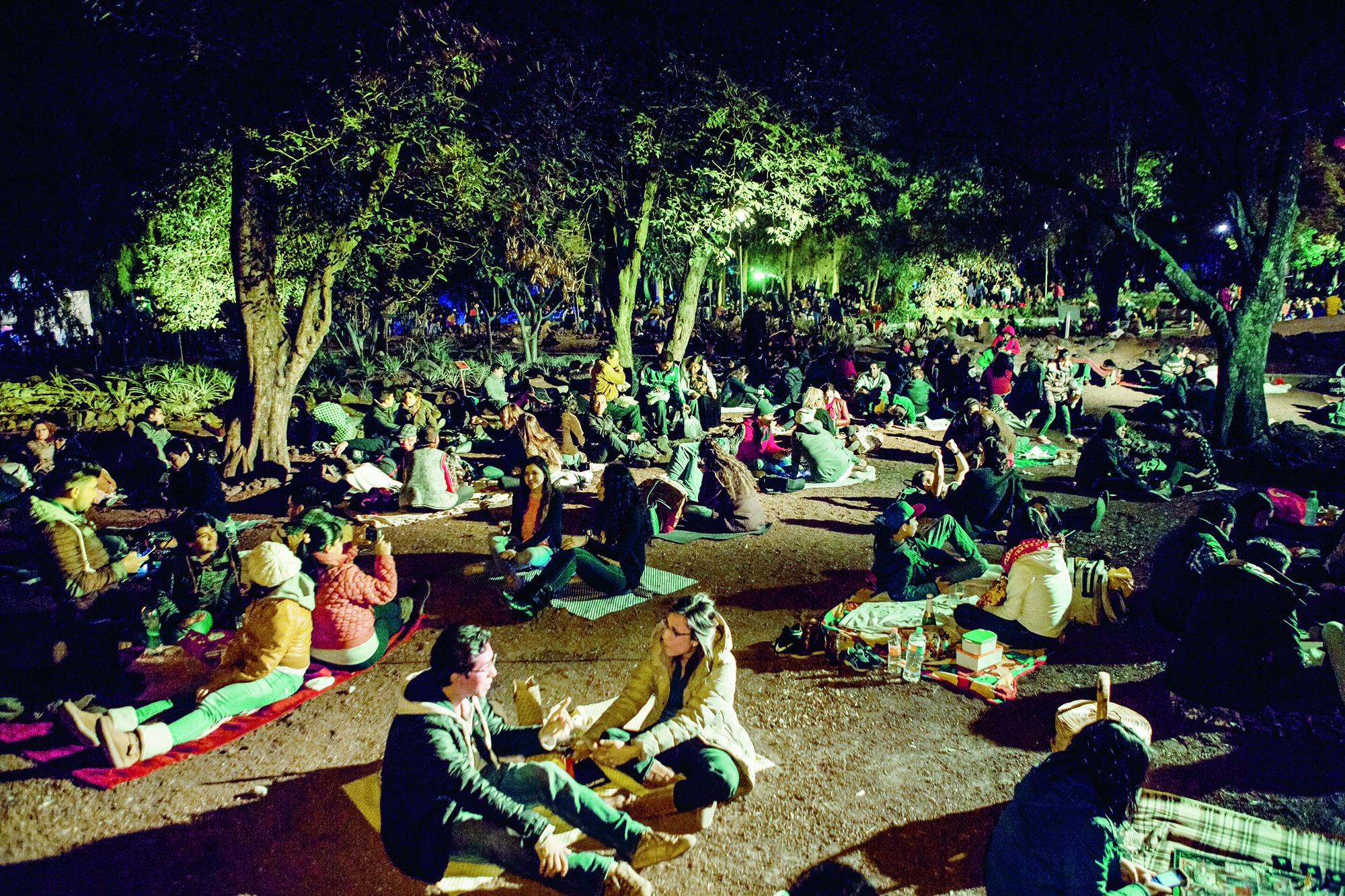 Picnic nocturno en el bot nico m sporm s for Jardin botanico bogota nocturno 2016