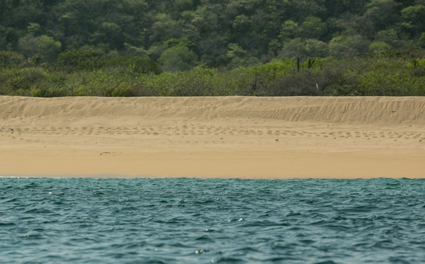 Playa a9