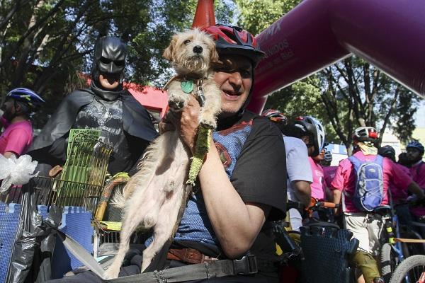 CIUDAD DE MÉXICO, 16ABRIL2016.- Más de 2 mil ciclistas participaron en el Gran Rodada con motivo del Día Mundial de la Bicicleta. La ruta comenzó en el Parque de los Venados, siguiendo por Gabriel Mancera, Av. Monterrey y Paseo de la Reforma hasta concluir en el Tótem Canadiense en la primera sección del Bosque de Chapultepec.  FOTO: MARÍA JOSÉ MARTÍNEZ /CUARTOSCURO.COM