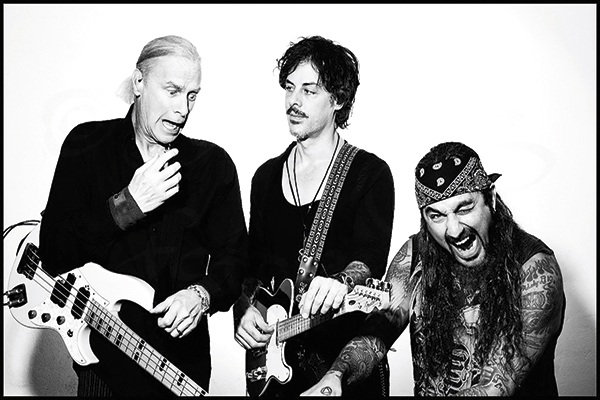 The-winery-dogs-ok