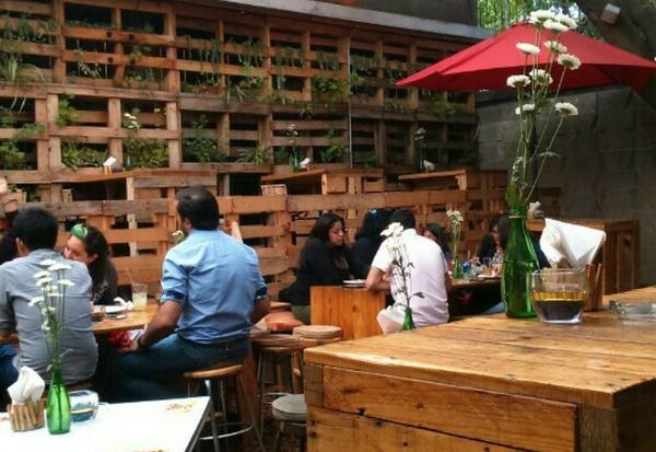 Un bar tan c modo como la casa de tu cuate m sporm s for Bar restaurante el jardin zamora