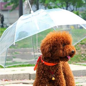 Útil-transparente-PE-mascota-pequeño-perro-ropa-para-la-lluvia-paraguas-con-perro-lleva-mantiene-seca