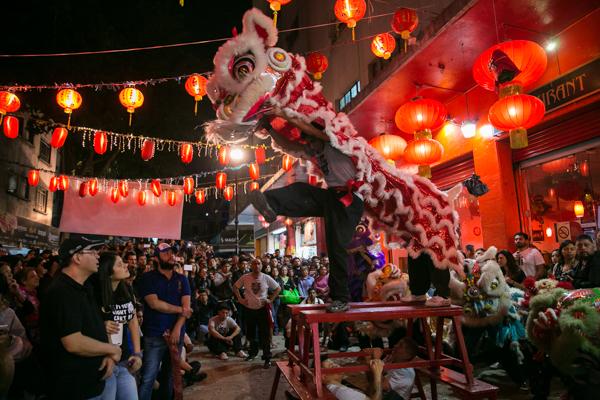 Año Nuevo Chino 2017 12