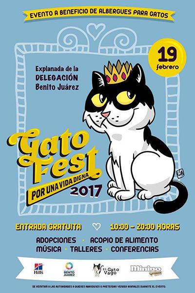 festival-de-gatos