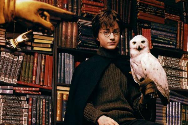 Harry Potter Lechuza