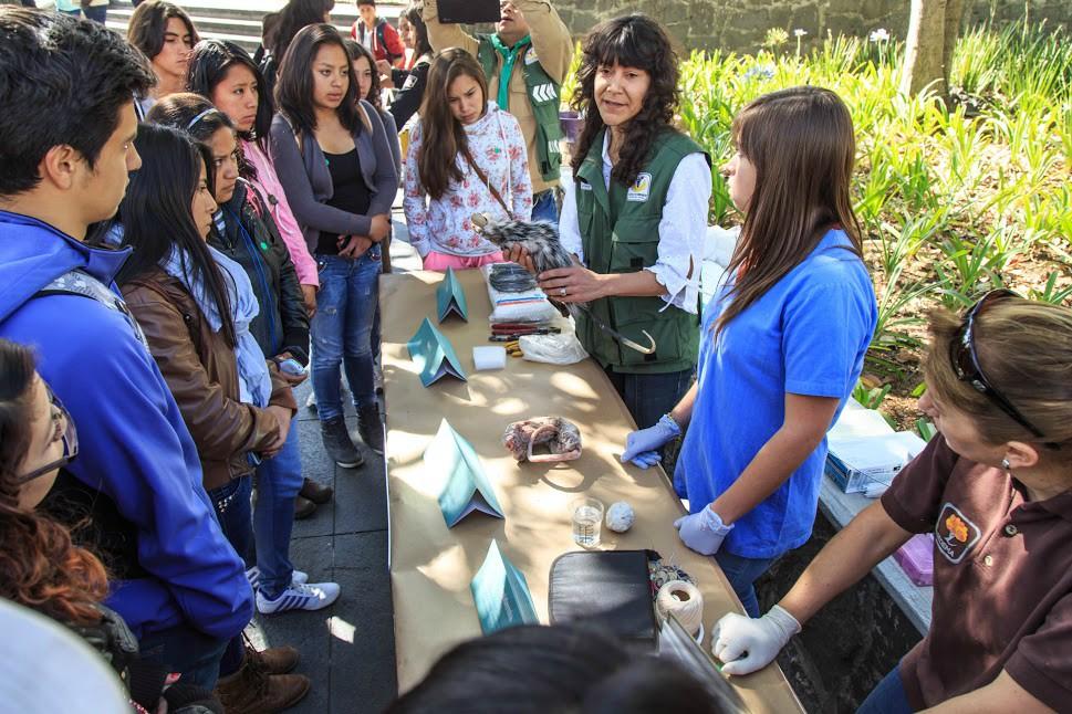 La cuarta edición de la Feria de Ciencias UNAM está lista.